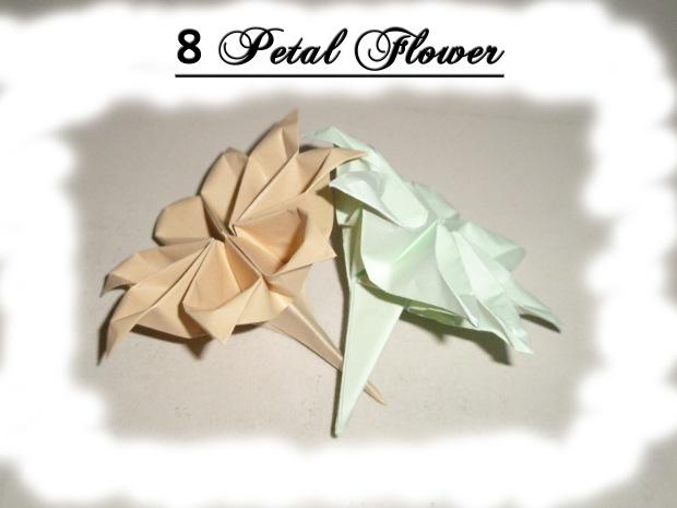8 Petal Flower